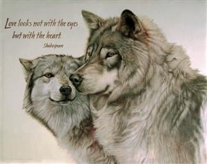 Wolves in Relationship